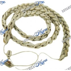 "Ochumare Cowrie Shell Necklace 46"" Brazilian Style"